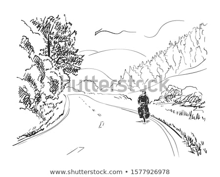 Biker on the road. Vector illustration stock photo © leonido