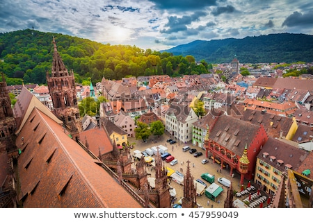freiburg im breisgau with martinstor stock photo © prill