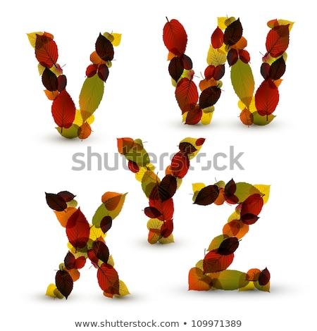 Najaar vector alfabet brieven doopvont vallen Stockfoto © orson