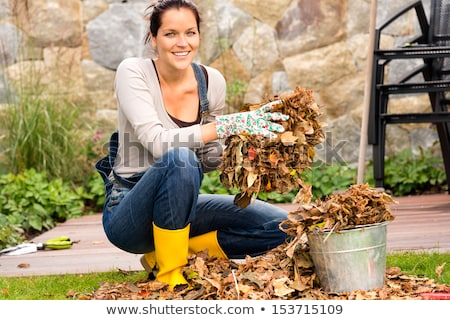 Woman raking leaves in  the garden Stock photo © photography33