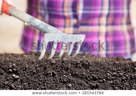 женщину каменщик лопатой здании строительство Сток-фото © photography33
