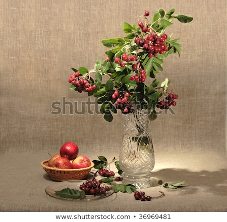Bouquet of ashberry in glass vase and group of a red apples. Stock photo © boroda