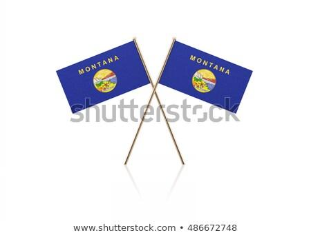 minyatür · bayrak · Montana · yalıtılmış · toplantı - stok fotoğraf © bosphorus