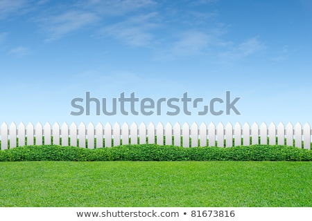 Picket Fence And Blue Sky Stock photo © Lightsource