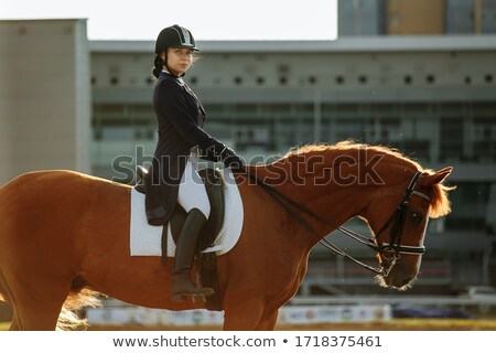 pretty young woman riding a horse stock photo © acidgrey