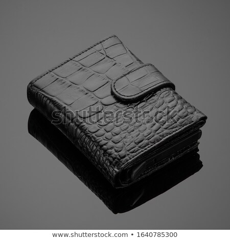 кожа · бумажник · изолированный · белый · фон · Финансы - Сток-фото © arenacreative