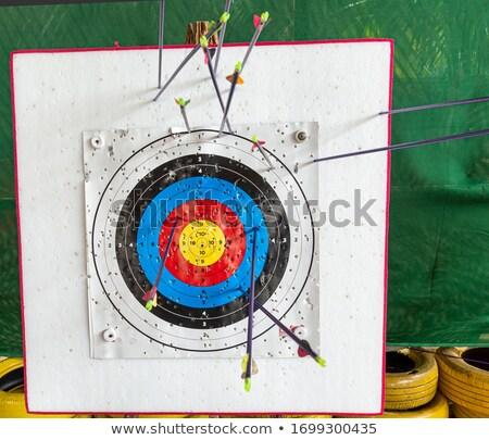 arrows aiming target showing archery skills stock photo © stuartmiles