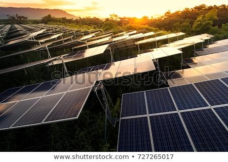 Solar cell Stock photo © TaiChesco