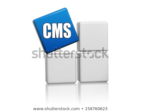 blue cube with letters CMS on boxes Stock photo © marinini