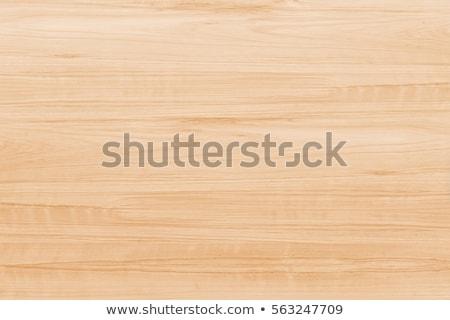 Fa textúra részletes textúra természetes fa fal Stock fotó © stevanovicigor