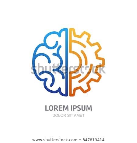 cerebro · inteligencia · descubrimiento · cerebro · humano · forma · estrellas - foto stock © flipfine