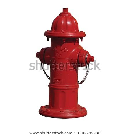 Red metallic fire hydrant on the street Stock photo © nalinratphi