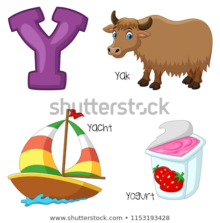 Y for Yak Stock photo © lenm