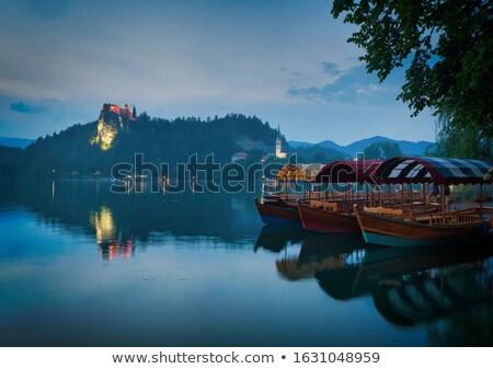 traditional pletna boatsin the lake bled stock photo © fesus