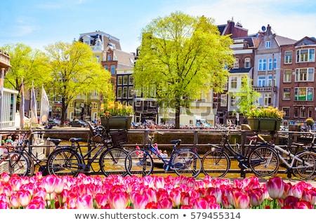 bike with tulips stock photo © ivonnewierink