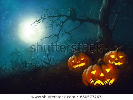 осень · пейзаж · луна · полнолуние · дерево - Сток-фото © wad