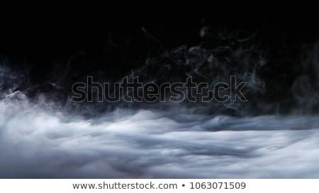 Valósághű kipufogó izolált fehér vektor konyha Stock fotó © smeagorl