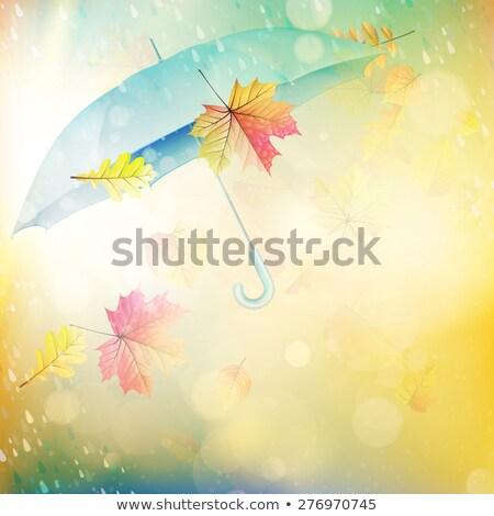 molhado · guarda-chuva · vermelho · chuva · cair · objeto - foto stock © beholdereye