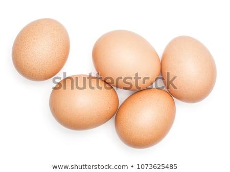 пять яйца сушат трава мелкий яйцо Сток-фото © stockfrank