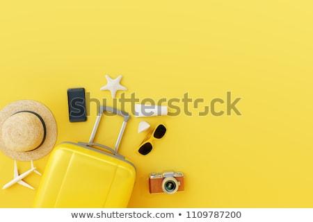 koffer · reiziger · toiletartikelen · hoed · houten · business - stockfoto © marimorena