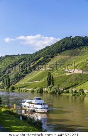 famous moselle sinuosity in trittenheim with cruise ship stock photo © meinzahn