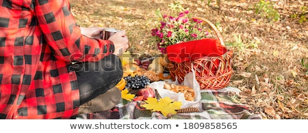 Ludzi piknik zewnątrz kobieta dziewczyna uśmiech Zdjęcia stock © racoolstudio