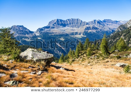 Rocks near a Hiking Trail Stock photo © Kayco