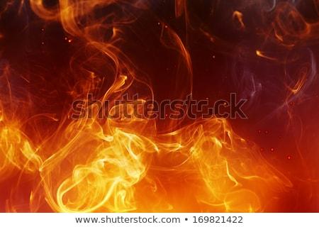 halloween fire background stock photo © stephanie_zieber