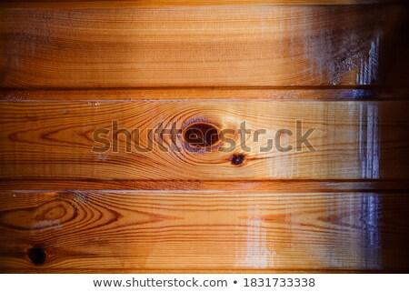 Modern burnt wood surface texture Stock photo © stevanovicigor