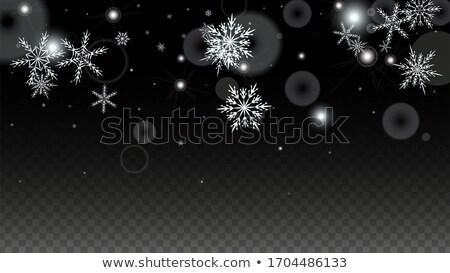 Vektör beyaz kar yağışı etki mavi Stok fotoğraf © Iaroslava