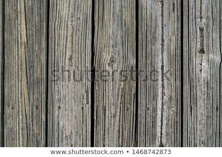Weathered  Wooden Dock Boards Background Stock photo © mybaitshop