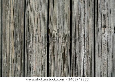 weathered wooden dock boards background stock photo © mybaitshop