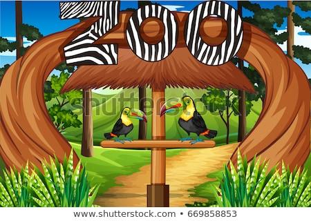 Hayvanat bahçesi giriş iki kuşlar örnek doğa Stok fotoğraf © bluering