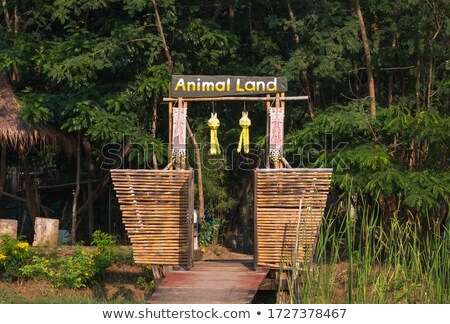 Wilde Tiere Zoo Eingang Illustration Natur Landschaft Stock foto © bluering