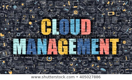cloud management in multicolor doodle design stock photo © tashatuvango