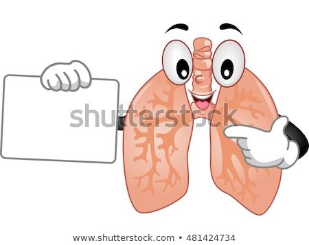 Mascotte boord illustratie gezonde menselijke presentatie Stockfoto © lenm