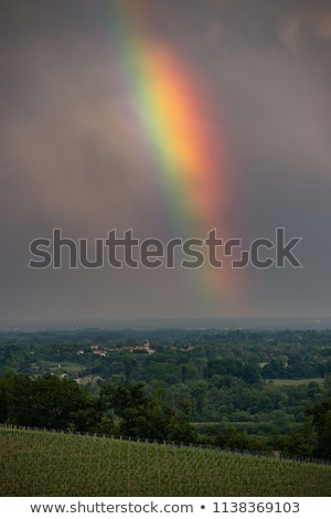 Colorful rainbow and storm in the sky above bordeaux vineyard Stock photo © FreeProd