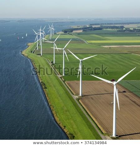 Campo vento illustrazione pittoresco senza soluzione di continuità erba Foto d'archivio © tracer