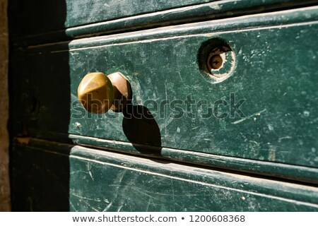 Shabby green door with bronze handle outdoors Stock photo © bezikus
