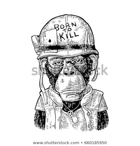Rajz csimpánz felirat illusztráció fa tábla mosolyog Stock fotó © cthoman