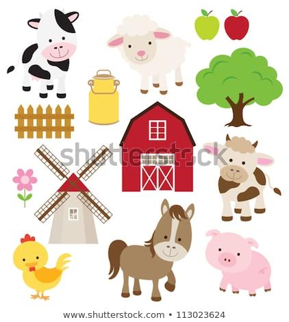 Boerderijdieren windmolen illustratie achtergrond schapen witte Stockfoto © colematt