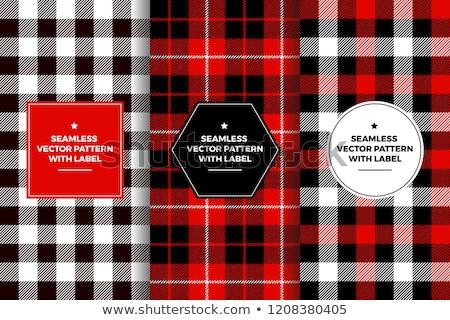 Lumberjack plaid pattern. Template white and black lumberjack. stock photo © AisberG