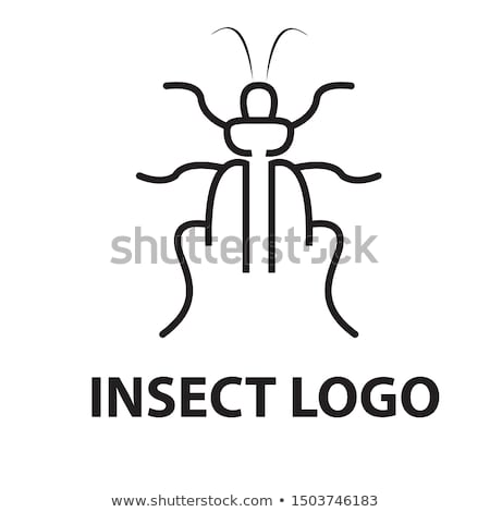 Vliegen insect vector logo symbool teken Stockfoto © blaskorizov