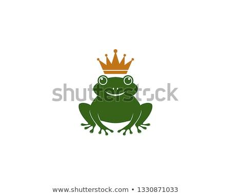 béka · herceg · mosoly · zöld - stock fotó © colematt