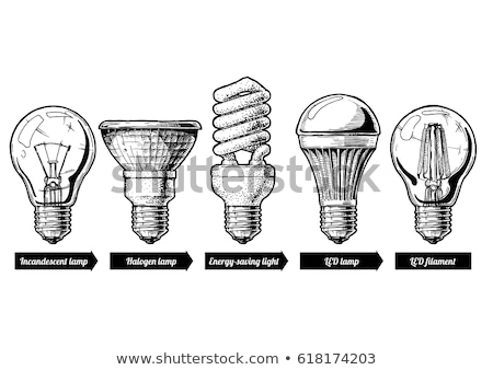 Incandescent light bulb sketch Stock photo © netkov1