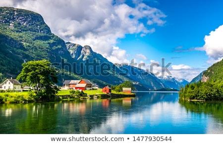 Noors landschap zonnige zomer dag Stockfoto © Kotenko
