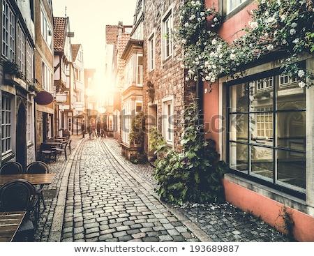 Barrio antiguo Amsterdam canal anillo primavera árbol Foto stock © neirfy