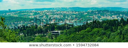 Panoramic view from sea to bank with sityscape with Mosque Istanbul Turkey on a sunset, at the summe Stock photo © artjazz