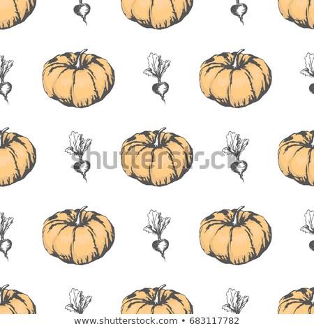 monokróm · dekoratív · sütőtök · ősz · növény · dísz - stock fotó © robuart