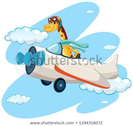 Stok fotoğraf: Aslan · binicilik · bağbozumu · uçak · örnek · gülümseme